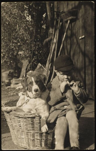 A small school boy sits next to his dog in a basket in his garden eating a snack