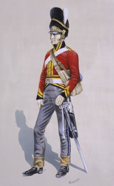 Sergeant - Royal North British Dragoons (Scots Greys). Painting by Malcolm Greensmith