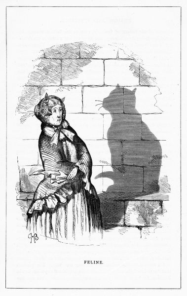 'Feline'. Casting the shadow of a sitting cat. Illustration from a series of shadow portraits of fictional characters by Charles H Bennett entitled Shadow and Substance, 1860