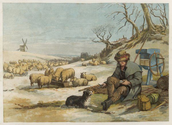 A shepherd rests with his dog, while his sheep eat from a trough nearby
