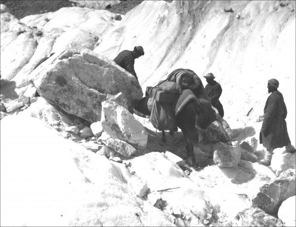Sherpas and mules negotiating steep rocks on a trip through Kashgar, western China