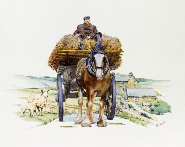 A heavy working horse pulls a high hay wagon along a country lane. Painting by Malcolm Greensmith