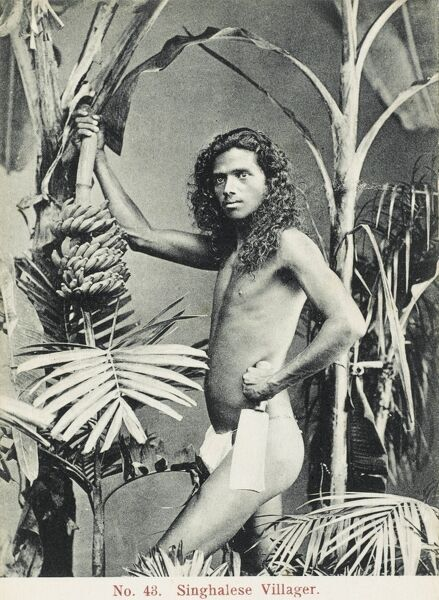 A young man from a Singahlese Village in Sri Lanka poses for a photograph amid some banana plants, holding a seriously lethal-looking cleaver!