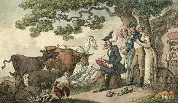 Dr Syntax sketches some picturesque livestock. Date: 1815
