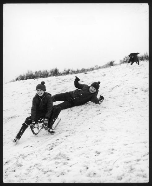 Two boys falling off a sledge in the snow