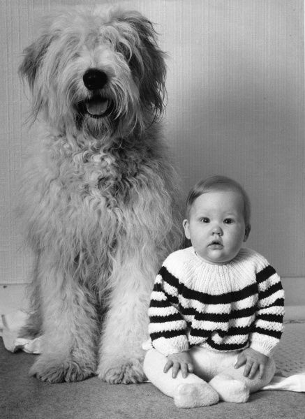 A small baby wearing a stripy jumper, sitting on the floor next to a large shaggy dog