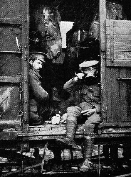 British soldiers from the British Expeditionary Force sharing a railway carriage, and a meal, with some horses, on their way to the front in August 1914, shortly after the outbreak of World War I