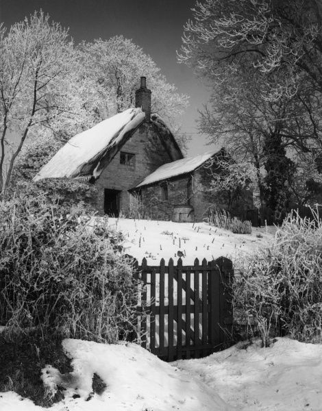 Winter snow covering a lovely thatched cottage at Upper Harlestone, Northamptonshire, England. Date: 1960s
