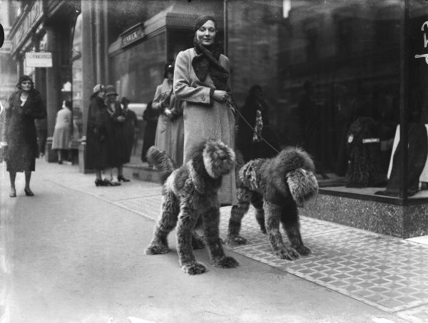 'Society's New Pets' - A model with high cheekbones, accompanied by her fashion accessories - toy dogs, Bond Street, London, England
