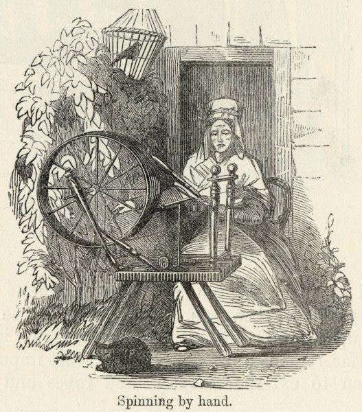 Spinning cotton using a spinning wheel