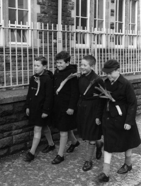 Smiling Welsh schoolboys, wearing leeks to school, a Saint David's Day (1st March) custom in Wales. Date: 1960s