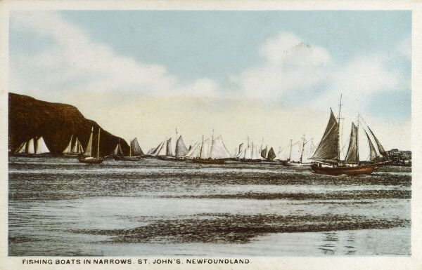 St. Johns - Newfoundland - Fishing Boats in the Narrows Date: circa 1910s