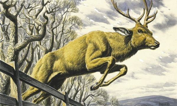 A stag leaps over a fence in a wintry landscape - illustration for 'The Harbourer' story