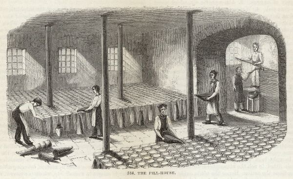 Sugar is normally sold in the form of large loaves, shaped like dunces' caps : these are prepared in the fill-house before baking in the oven