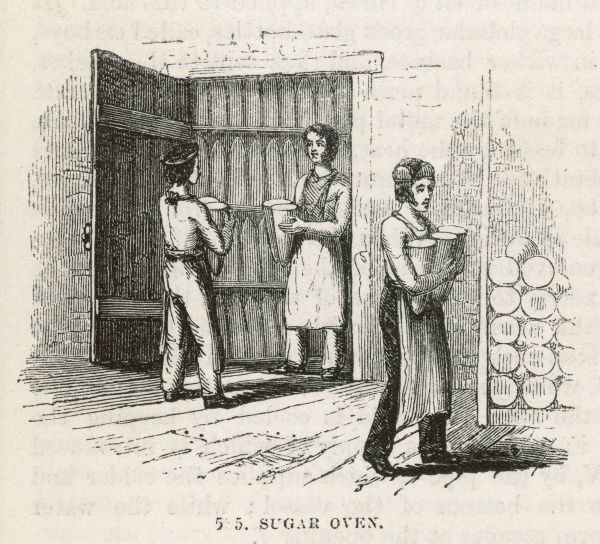 Household sugar is normally sold in the form of large loaves, shaped like dunces' caps : these are prepared in the fill-house then baked in the oven