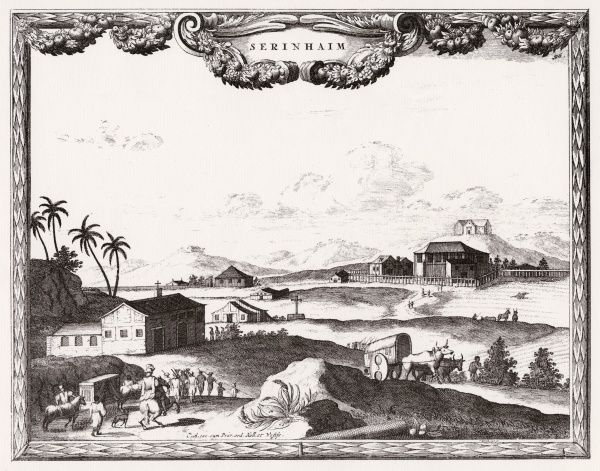 Surinam, on the north coast of South America: general view, with travellers and an ox cart
