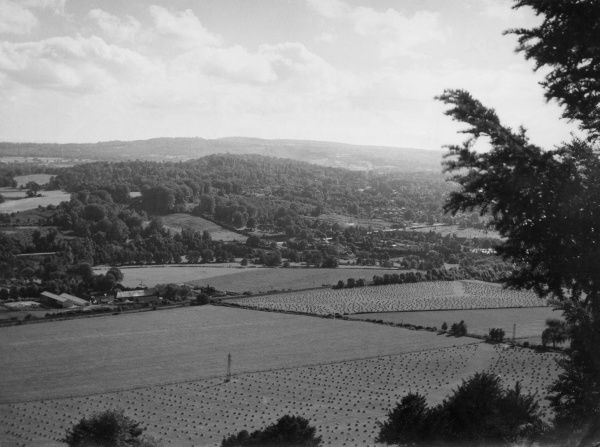 A panoramic view from Box Hill, Surrey, England, looking towards Leith Hill. Date: 1950s