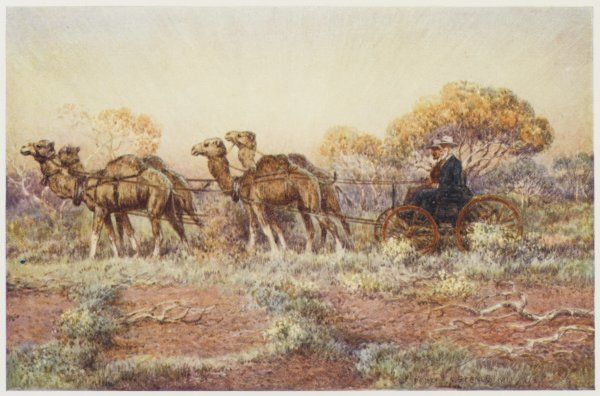 Surveyors in a camel-drawn carriage reconnoitre the route for the trans-continental railway which will cross central Australia
