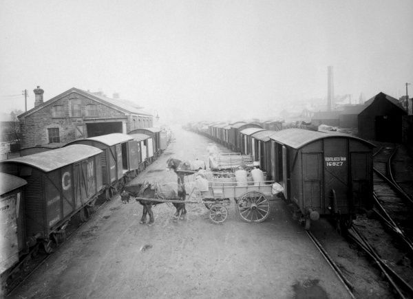 View of the railway tracks at the Swansea Goods Yard, not far from the Docks, on the Great Western Railway in Glamorgan, South Wales. Two horses and carts stand in the middle, with ventilated vans on the tracks on either side