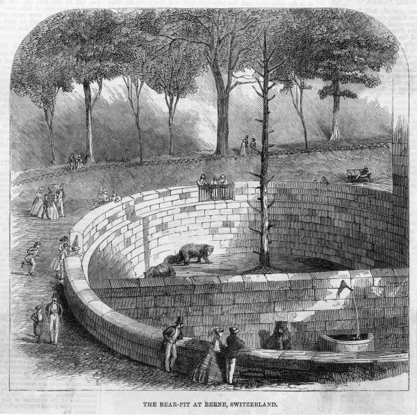 The bear pit : an English visitor fell into the pit in 1861, and was fatally mauled