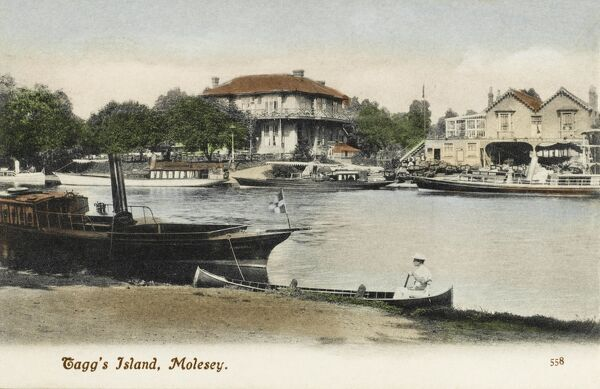 Tagg's Island, Molesey on the Thames to the west of London