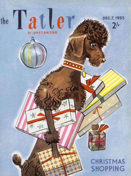 Illustrated front cover of The Tatler featuring a highly independent poodle dog who appears to have done all his Christmas shopping