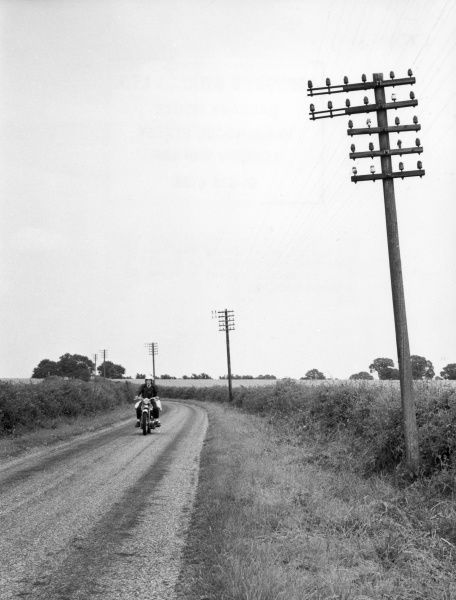 Even motoring on a quiet lane, the beauty of the countryside is spoilt by ugly telegraph poles; a scene in Warwickshire, England. Date: 1960s