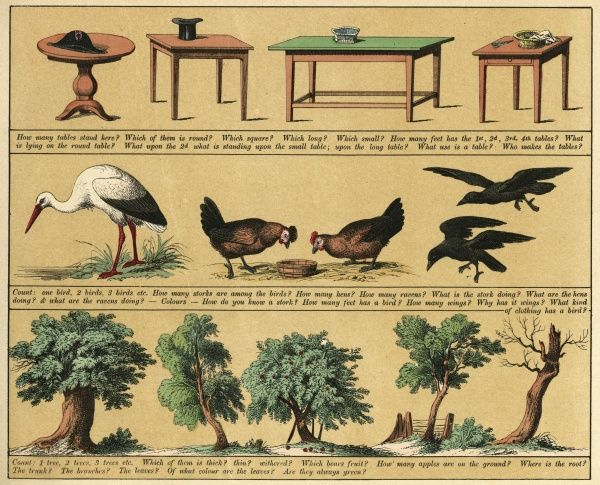 Plate 4 features pictures of tables, birds (stork, chickens, ravens) and trees. Date: 1880