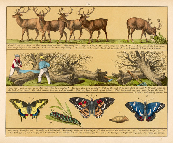 Plate 9 features pictures of deer, felling trees and butterfies
