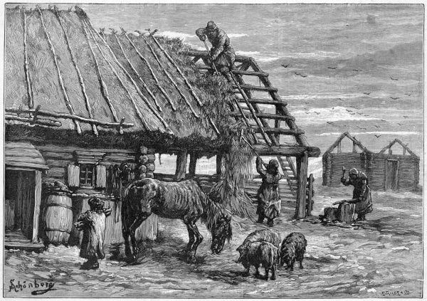 Peasants strip the thatch from roofs of farm buildings, to feed their livestock