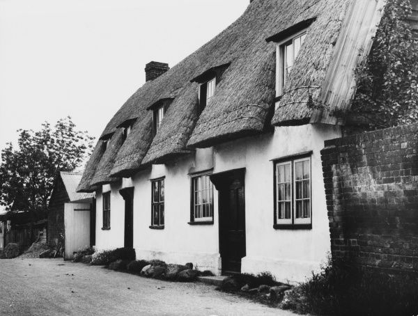 Semi-detached, whitewashed cottages with trim thatch, near Great Bardfield, Essex, England