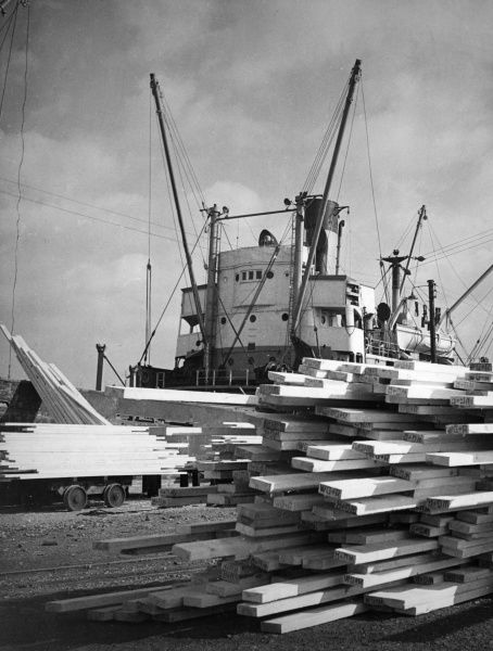 Loading timber onto a lighter at Victoria Dock, Hull, Humberside, England. Date: 1960s