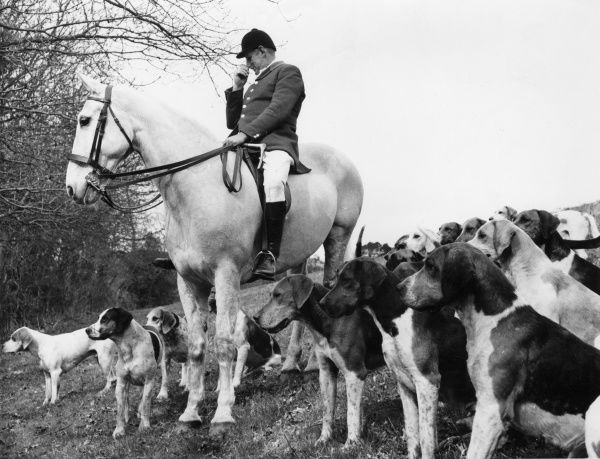Master of Fox Hounds of the South Devon Foxhounds