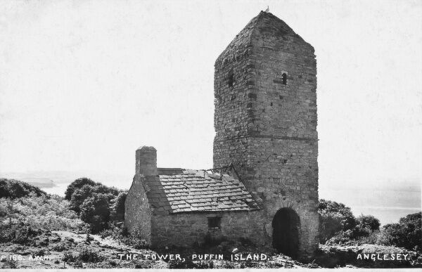 The Tower, the solitary building on Puffin Island, Anglesey with Welsh slate roof (slate likely to have originated from Port Dinorwic across the Menai Straits)