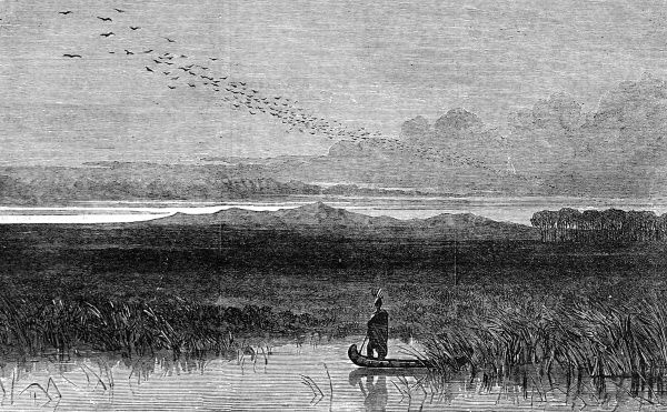 Atmospheric engraving of American Indian standing in his canoe in the reeds watching the river at the horizon