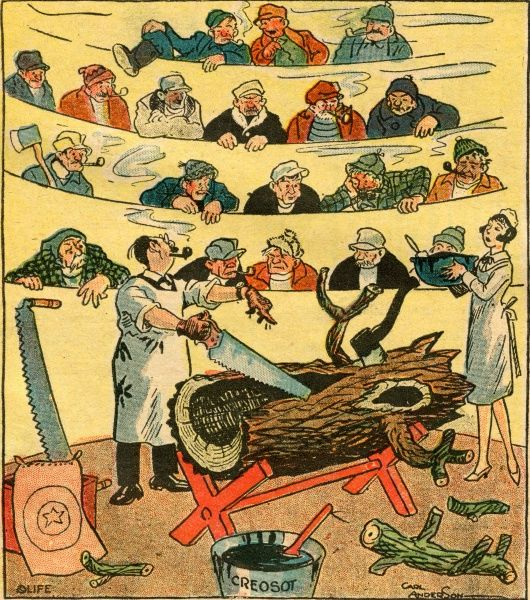 A cartoon on the tree- surgeon's art: a tree trunk lies in an operating theatre with an axe embedded in its bark while the surgeon demonstrates his skill Date: 1927