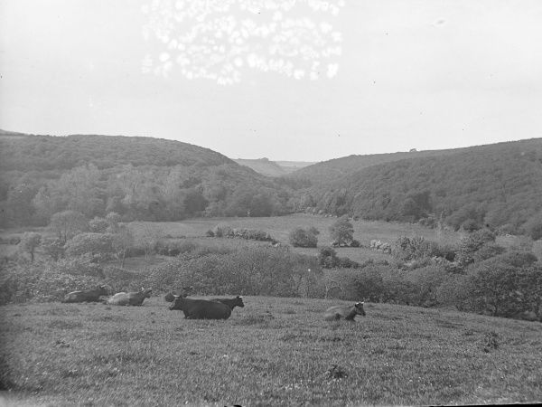 View of Treffgarne Gorge from the village of Spittal, Pembrokeshire, Dyfed, South Wales, before the railway line was built