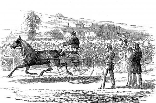 Engraving showing a race between a horse-drawn trotting-carriage and a 'Penny Farthing' (or 'Ordinary') bicycle, held at the Alexandra Palace, 1875