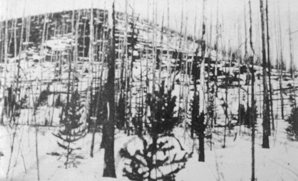 The devastated Tunguska forest, as seen by Kulik in 1927