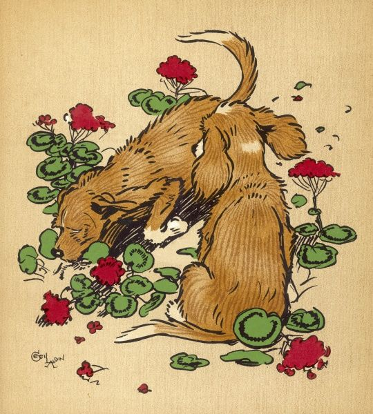 Twin puppies, Snip and Snap, bury a bone under the geranium bed and generally make a mess