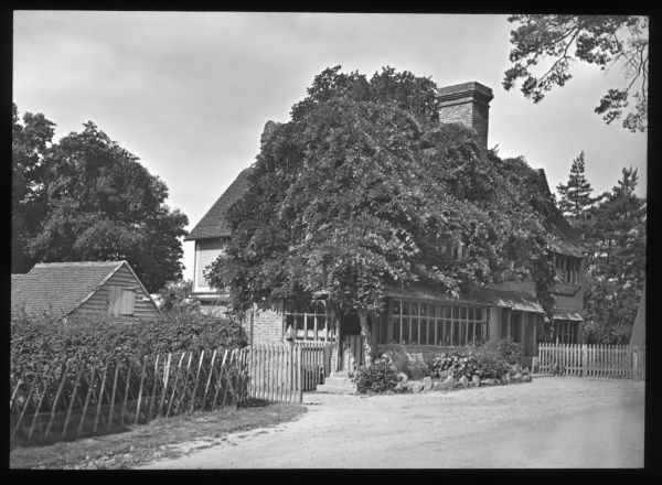 An unidentified house on a country lane, partly obscured by a large tree