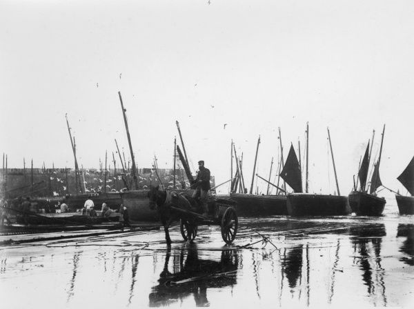 Fishermen (left) unloading a catch on the beach at St Ives, Cornwall, while a man with horse and cart sets off with a full load