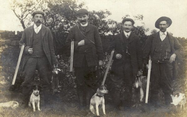 The Vicar, the Curate, the Organist and the Verger pop out for a spot of rabbit shooting on Saturday afternoon, accompanied by their Jack Russell terriers. Date: circa 1910