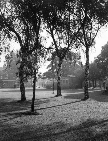 A picturesque glimpse of Victoria Park, one of the fine open spaces in Cardiff, Wales. Date: 1950s
