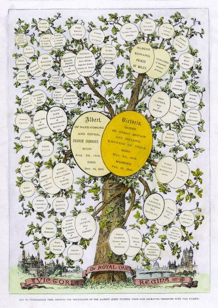 The family trees of Victoria and Albert showing their descendants