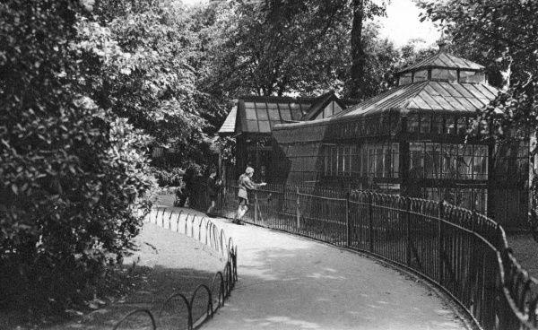 View of the Aviary in the Arboretum, a public park near the town centre, Derby. Date: circa 1910