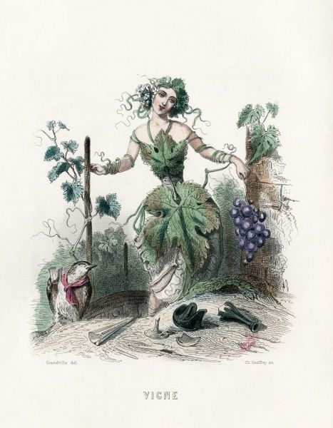 The vine personified Date: 1847