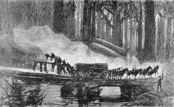Engraving showing a wagon broken down as it carried timber from the forest to San Francisco, 1884