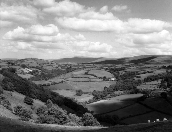 A fine panoramic view of the Welsh countryside of Carmarthenshire, Wales. View from Carreg Cennan Castle. Date: 1950s