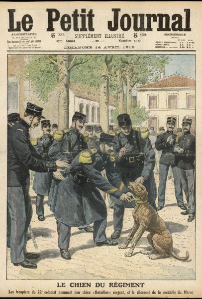 A dog serving with the French 22nd Colonial Regiment is awarded the Morocco Medal and promoted to sergeant
